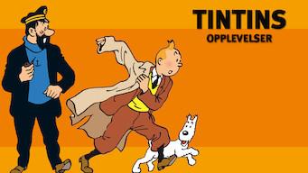 Tintins opplevelser (1992)