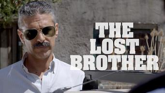 El otro hermano (2017)