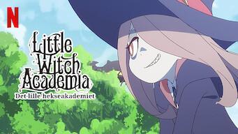 Det lille hekseakademiet (2017)