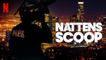 Nattens scoop (2017)