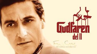 Gudfaren 2 (1974)
