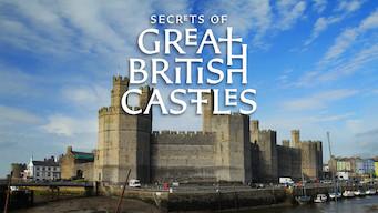 Britiske borgers hemmeligheter (2016)