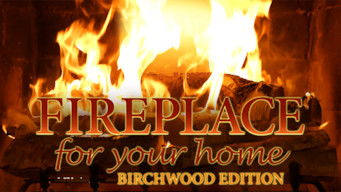 Fireplace 4K: Crackling Birchwood from Fireplace for Your Home (2015)