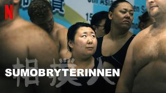 Sumobryterinnen (2018)