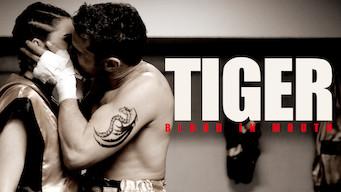 Tiger (2016)