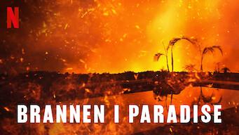 Brannen i Paradise (2019)