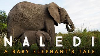 Naledi: Et elefantliv (2016)