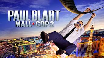 Mall Cop 2 (2015)
