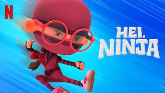 Hei, ninja (2019)